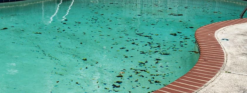 picture of pool after monsoon